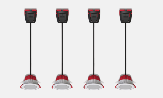 RAPID10 Design